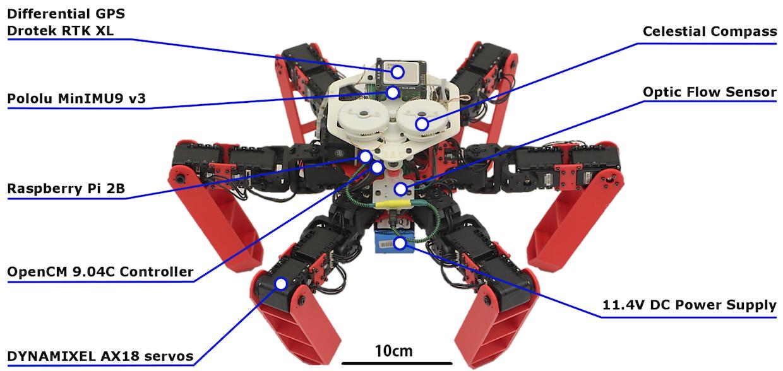 向蚂蚁学习!六足机器人可利用偏振太阳光实现精确导航